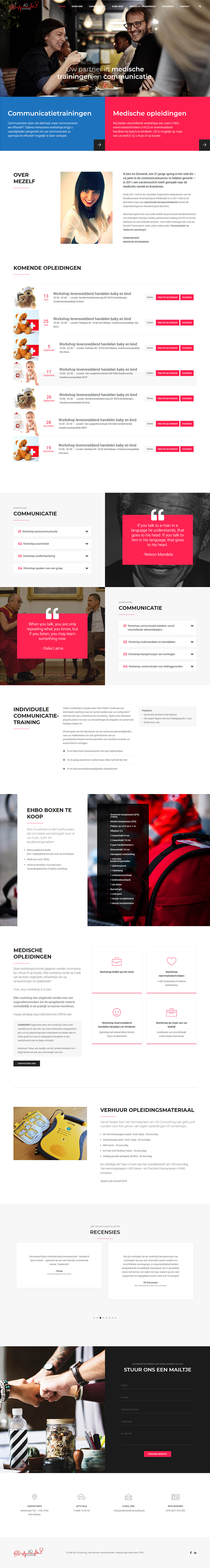 andesmedt consulting preview volledige website