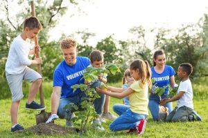Vrijwilligers planten een boom